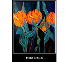 TULIPS FOR SHEILA Photographic Print
