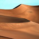 Dune Majesty by Bryan Shane