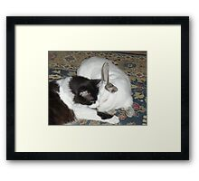 Sammie and Bunny Framed Print