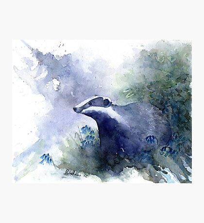Water colour Badger Photographic Print
