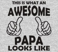 Awesome Papa T Shirts, This is what an Awesome Papa by cerenimo
