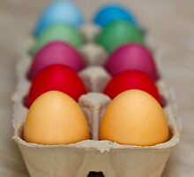 Colorful Painted Easter Eggs Green Yellow Purple by sitnica
