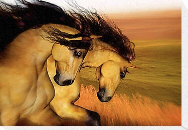 The Buckskins'... by Valerie Anne Kelly