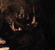 Big Room at Carlsbad Caverns  by Cassandra Scarborough