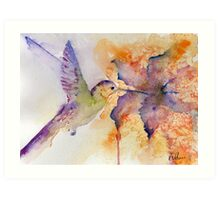 Purple Hummingbird Art Print