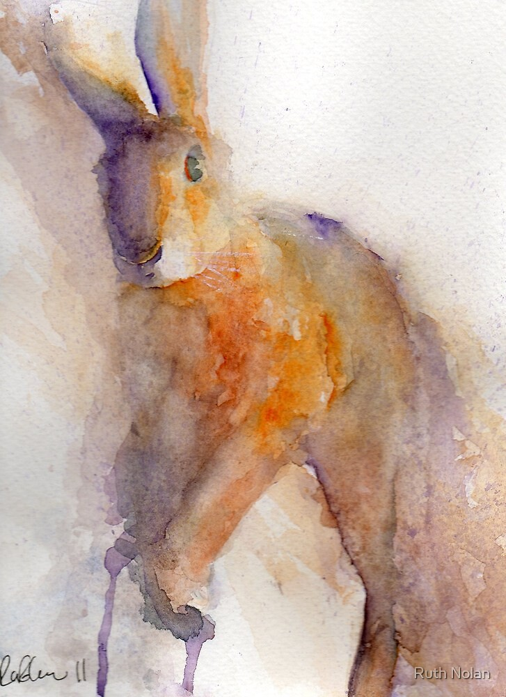 Orange Hare by Ruth Nolan