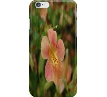 Mystery In The Grass iPhone Case/Skin
