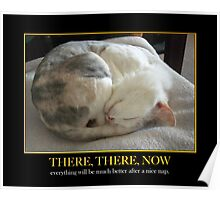 Nice Nap Poster