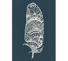 Feather Paper-Cut Photographic Print