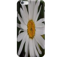 What A Beautiful Day iPhone Case/Skin