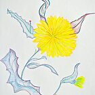 Dandelion in Colored Pencil by Christine Chase Cooper