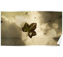 A Leaf in the Clouds Poster