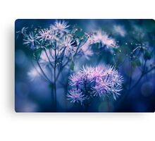 Blue Wilderness Canvas Print
