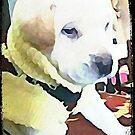 Bella's Puppy by ArtChances