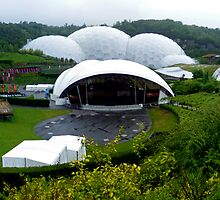 Eden Project by mikebov