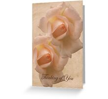 Thinking of You with Pink Roses card Greeting Card