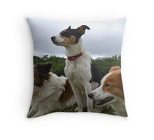 Sheep dogs at attention Throw Pillow