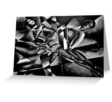 The Models: Black and white Greeting Card