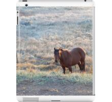 Wrong side of the fence iPad Case/Skin