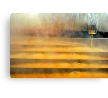 Sweet Water Falls in Muddy Pond Canvas Print
