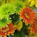 Orange and Green Flowers by David Shayani