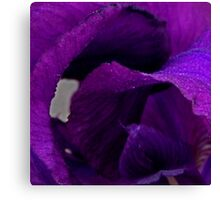 Purple Petal Abstract Canvas Print