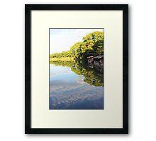 Zen pond Framed Print