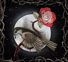 The Nightingale and The Rose by Matt Bottos