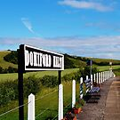 Doniford Halt Station. by littleredbird