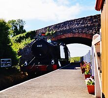 Train pulling into Doniford Halt Station. by littleredbird