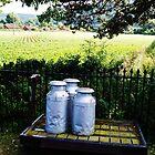 Milk canisters on a cart. by littleredbird