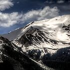 Timberline by Bill Wetmore