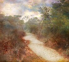 Path of De-Light by Susan Werby