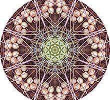 Egg Mandala by AriRashkae