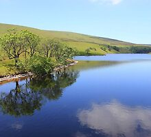 More of the reservior by DAVE SNEYD