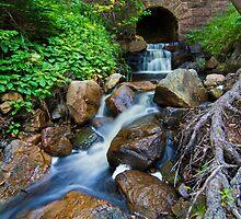 Acadia National Park by MIRCEA COSTINA