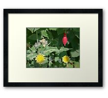 Flower Salad Framed Print
