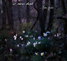 The Poetry Of The Earth Is Never Dead by DotsSpot