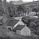Cottages in the Trees - B&W by Tom Gomez