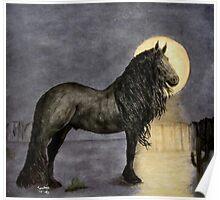 Friesian Stallion in the Moonlight Poster