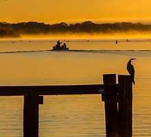 into the sunrise - Mannum SA by Dave  Hartley