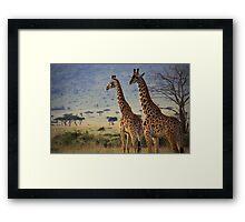 Cautious Giraffe Framed Print