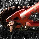 Rusty Red Bike II by Hannah Ruth