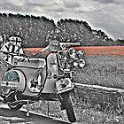 Vespa T5 in English Poppy Field by respectdue