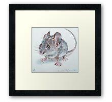 Miesje Mouse Framed Print