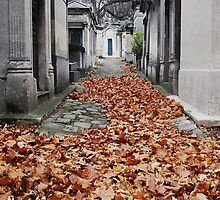Autumn at Pere Lachaise by karinast123