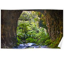 Glow worm tunnel Lithgow Poster