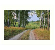 Early Evening in Late Summer Art Print
