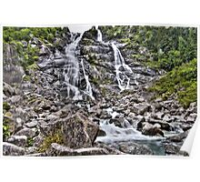 Nardis Waterfall Poster