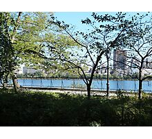 NYC Central Park Photographic Print
